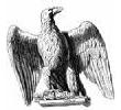 Эмблема клана: Первая когорта