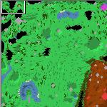 """Поверхность карты """"Дракон Природы 2021"""""""